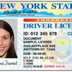 Как получить водительские права в США?