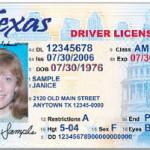 Как получить водительские права в США студенту по F-1 или J-1 визе